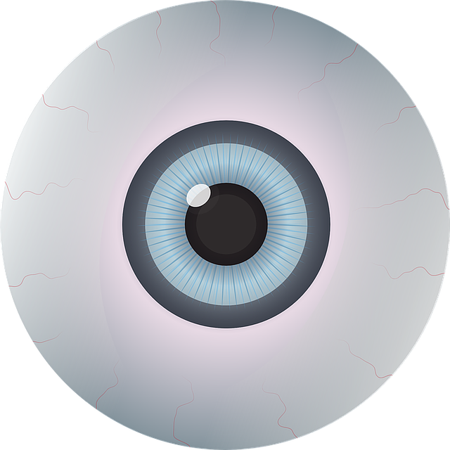 Vector eyeball horror eye. Free image on pixabay