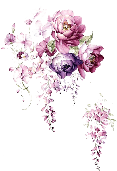 Vector flowers png. Free background with watercolors