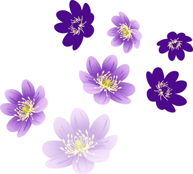 Vector flower png. Flowers official psds share