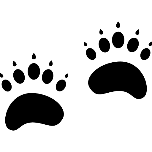 Vector footprints panda. Pawprints free animals icons
