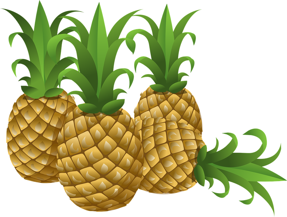 Vector fruits exotic fruit. Free photo yellow tropical