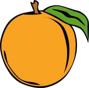 Vector fruits gambar. Fruit orange clip art