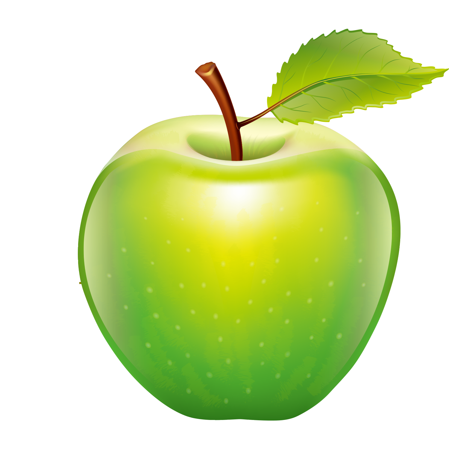 Vector vegetables realistic. Apple tape measure icon