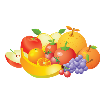 Vector fruits sliced. Passion fruit png vectors