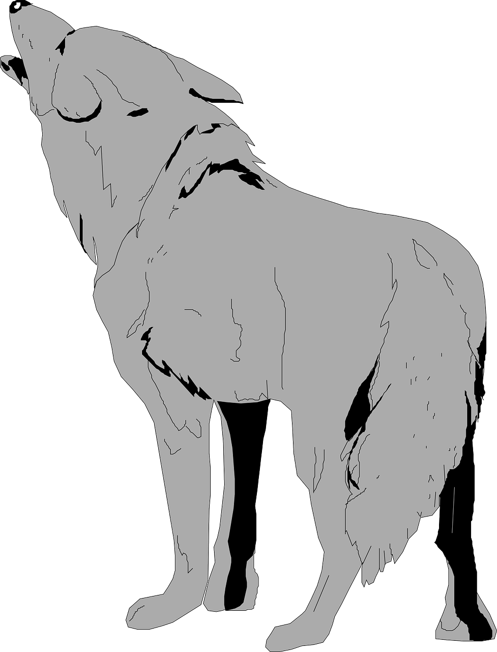 Fur vector animal. Gray tail coyote free