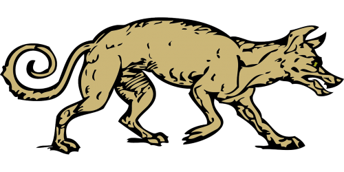 Fur vector beast. Coyote animal canine tail