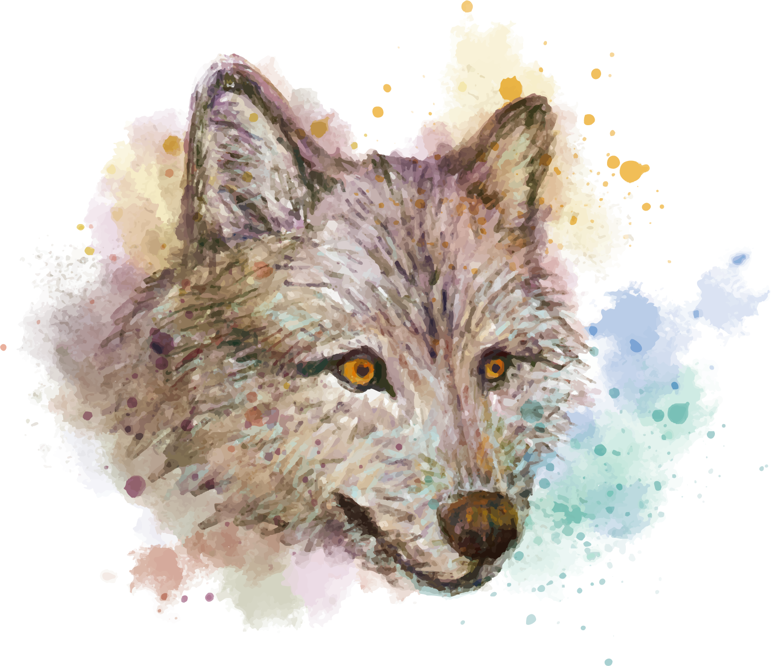 Vector fur wolf. Gray watercolor painting red