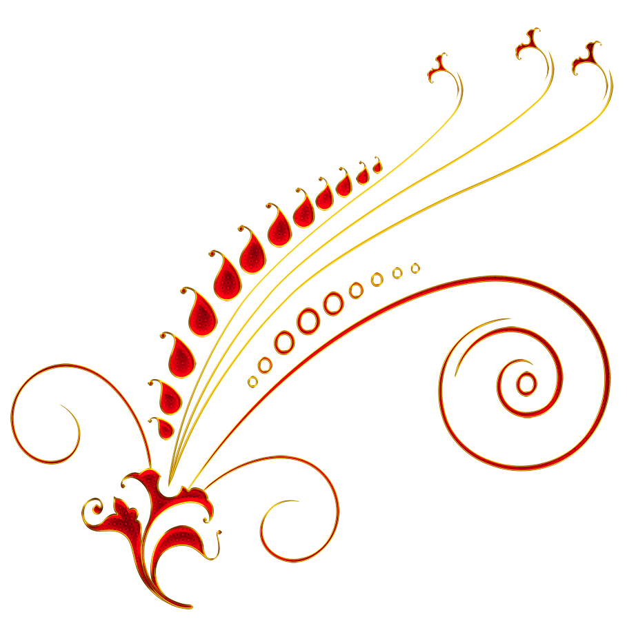 Vector gold floral. Red and ornament png