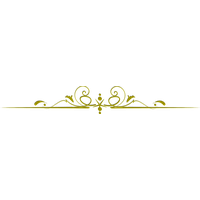 Vector gold line. Golden graphic black