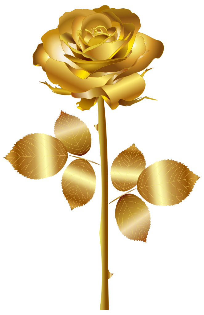 Vector gold rose. Golden png high quality