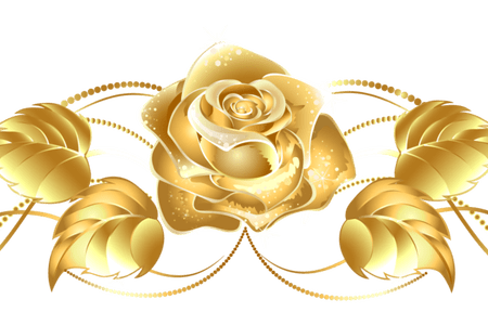 Vector gold rose. Flowers border k pictures