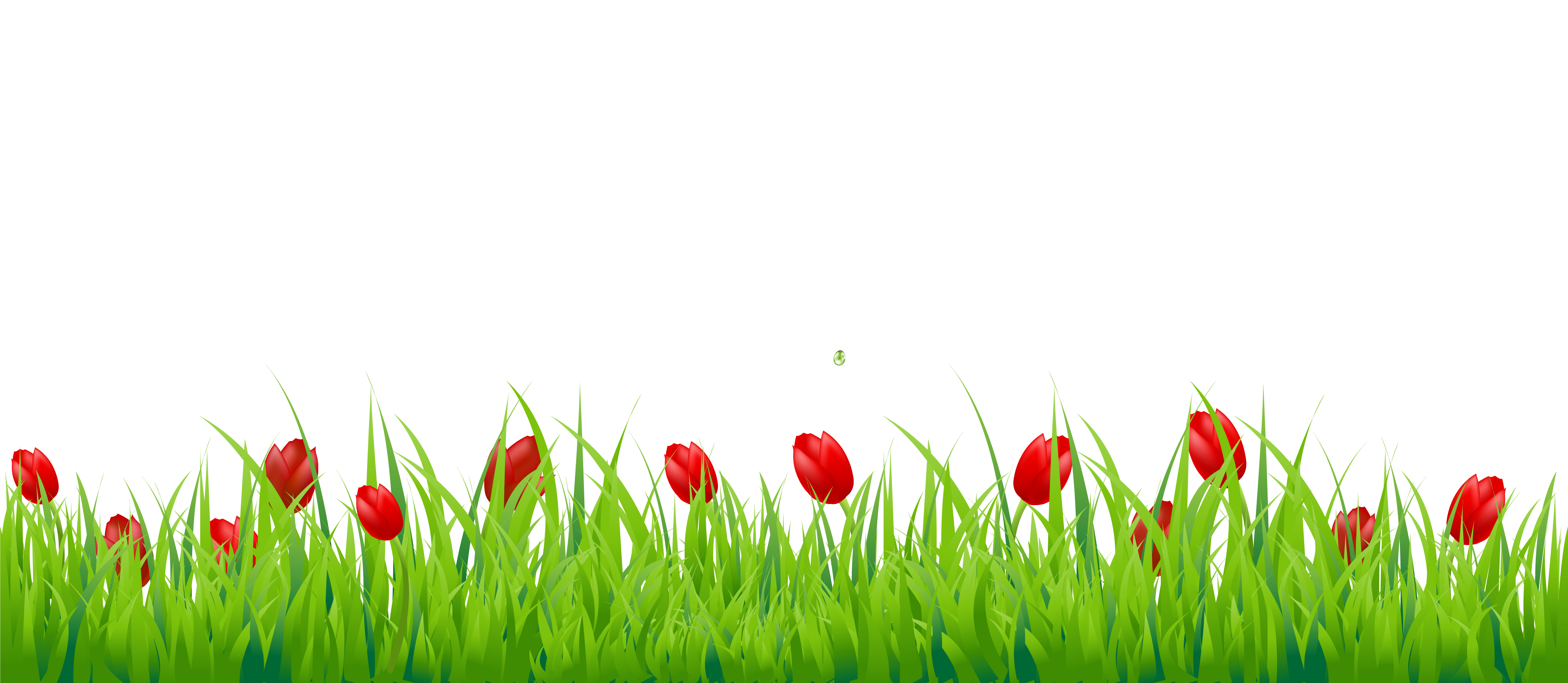 Vector grass png. Transparent image in maadco