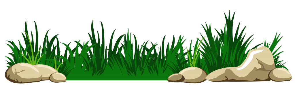 Vector grass png. Photo clipart psd peoplepng