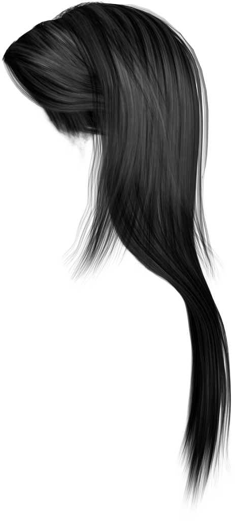 Vector hair png. Picture peoplepng com