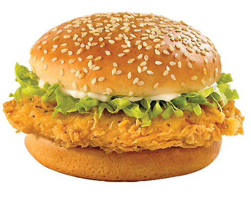 Vector hamburger chicken. Sandwich twenty four isolated