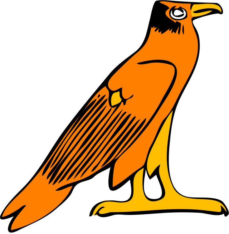 Vector hawks stylized. Falcon eagle computer icons