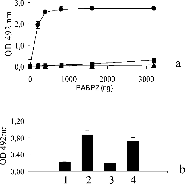 Vector host interaction. Vpg pro with pabp