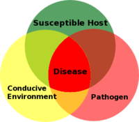 Vector host triangle. Plant disease forecasting wikipedia