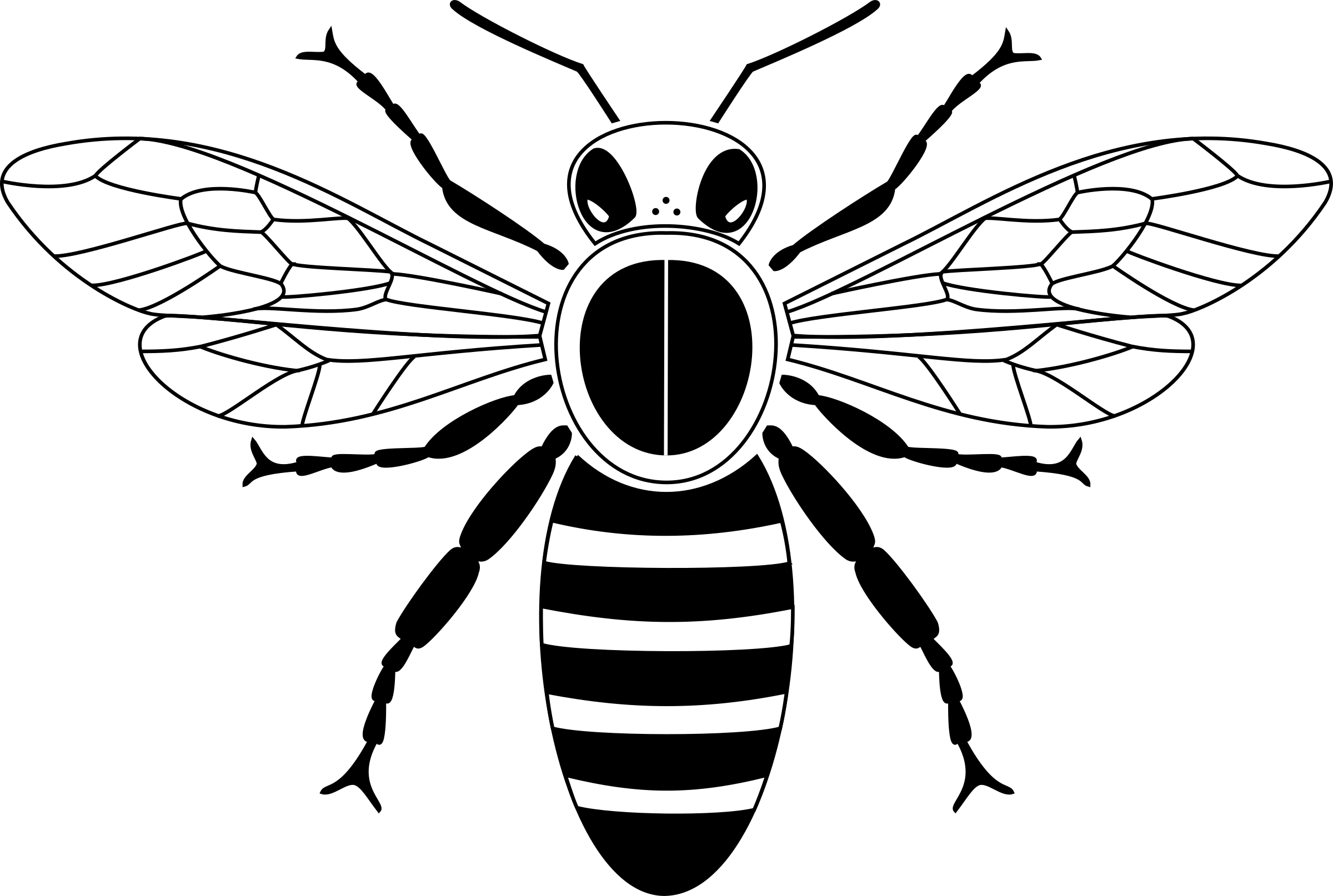 Clipart simple from above. Wasp vector stingless bee clip free library