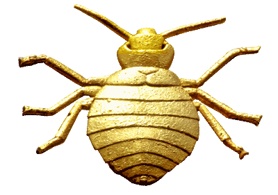 Vector parasite bed bug. The gilded vectors of