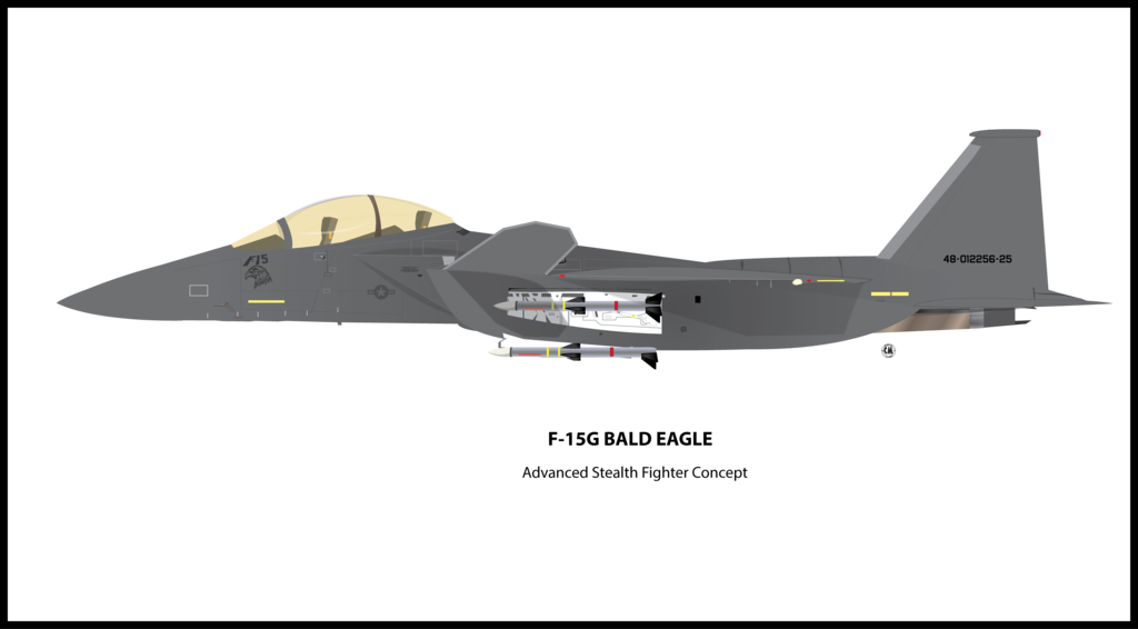 Vector jet eagle. F g bald by