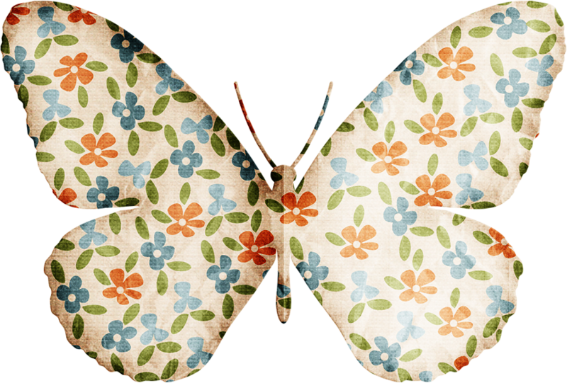 Vector laces butterfly. Jss almostfall folded png