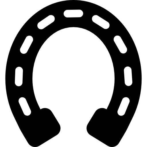 Vector magnet horshoe. Horseshoe variant with long