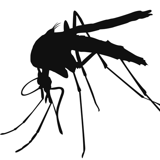 Vector mosquitoes. Mosquito png transparent images