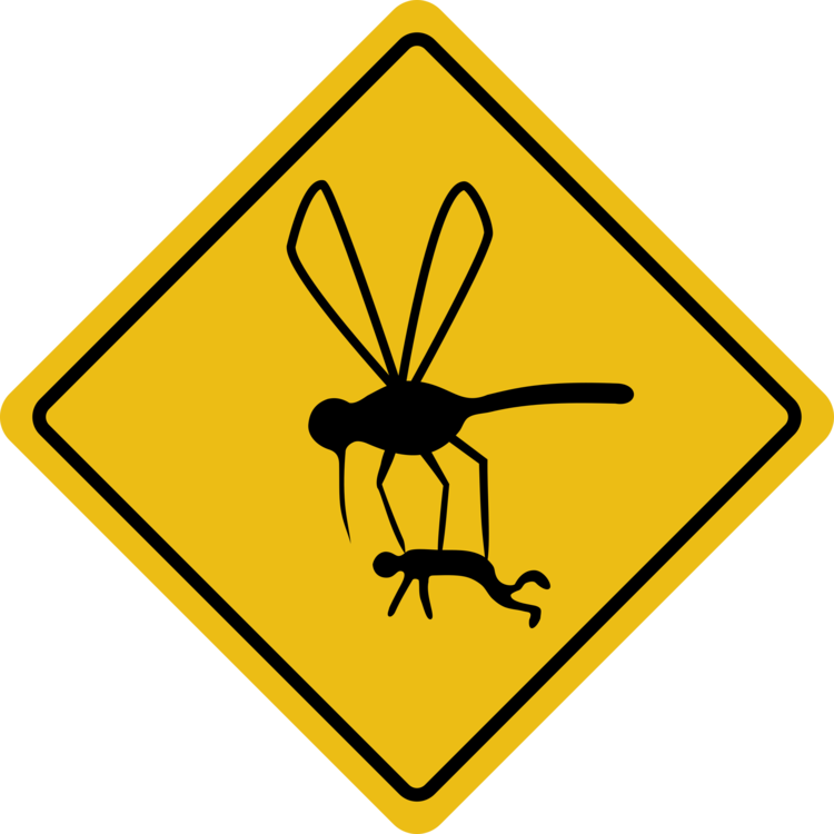 Vector mosquitoes marsh. Baby on board child