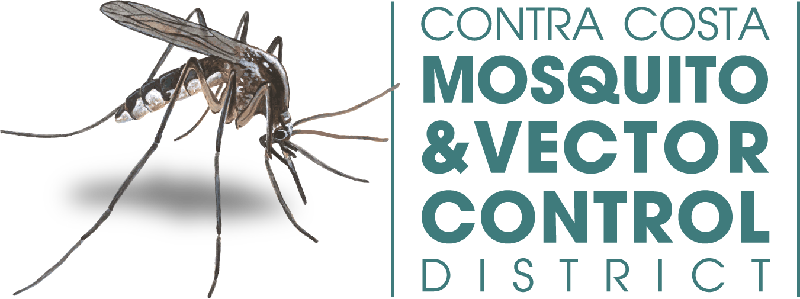 Vector mosquitoes biological control. Notification of action contra