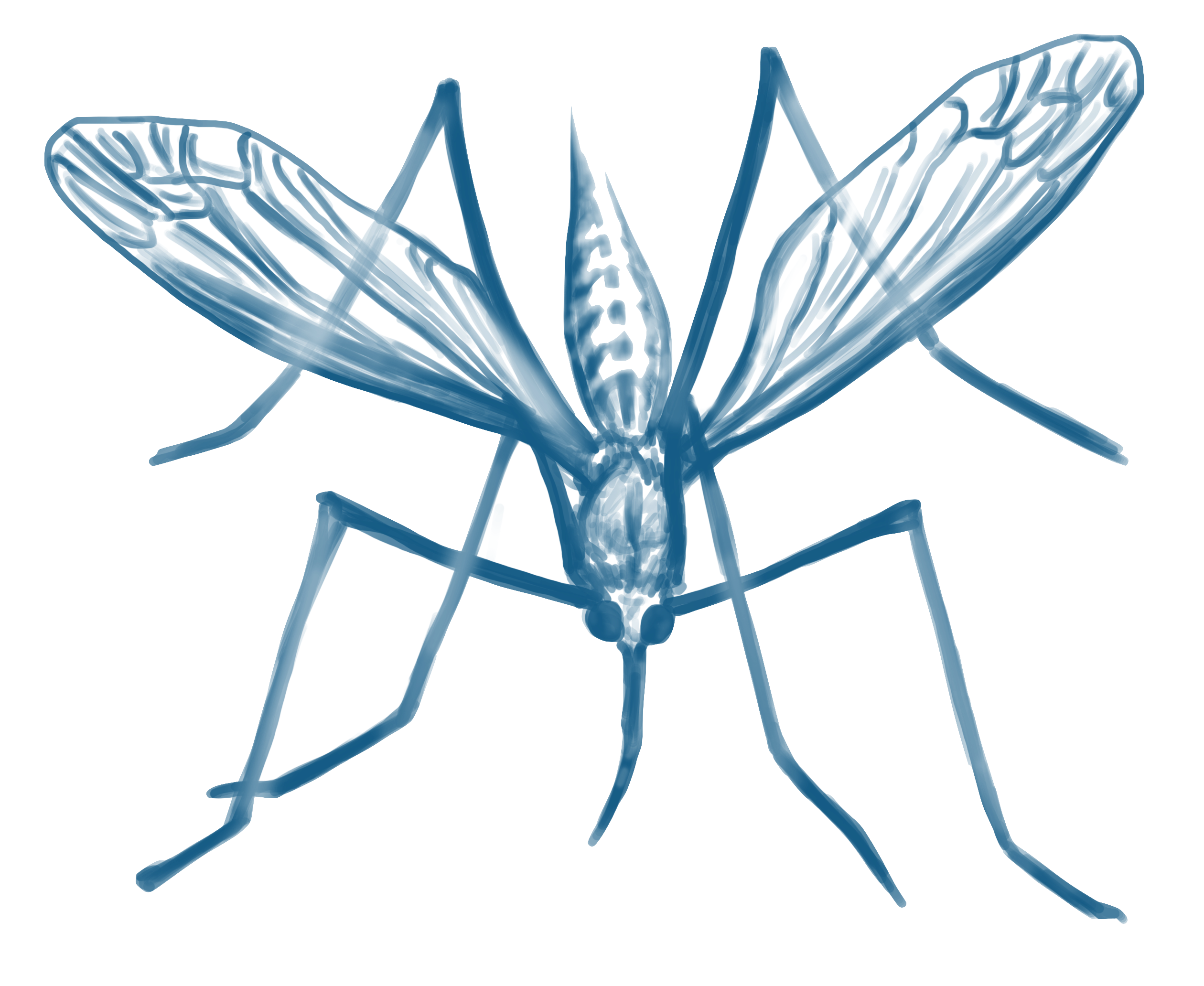 Vector mosquitoes malaria. Scientists call for mutant