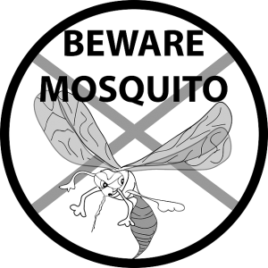 Vector mosquitoes scared. News zika crisis or