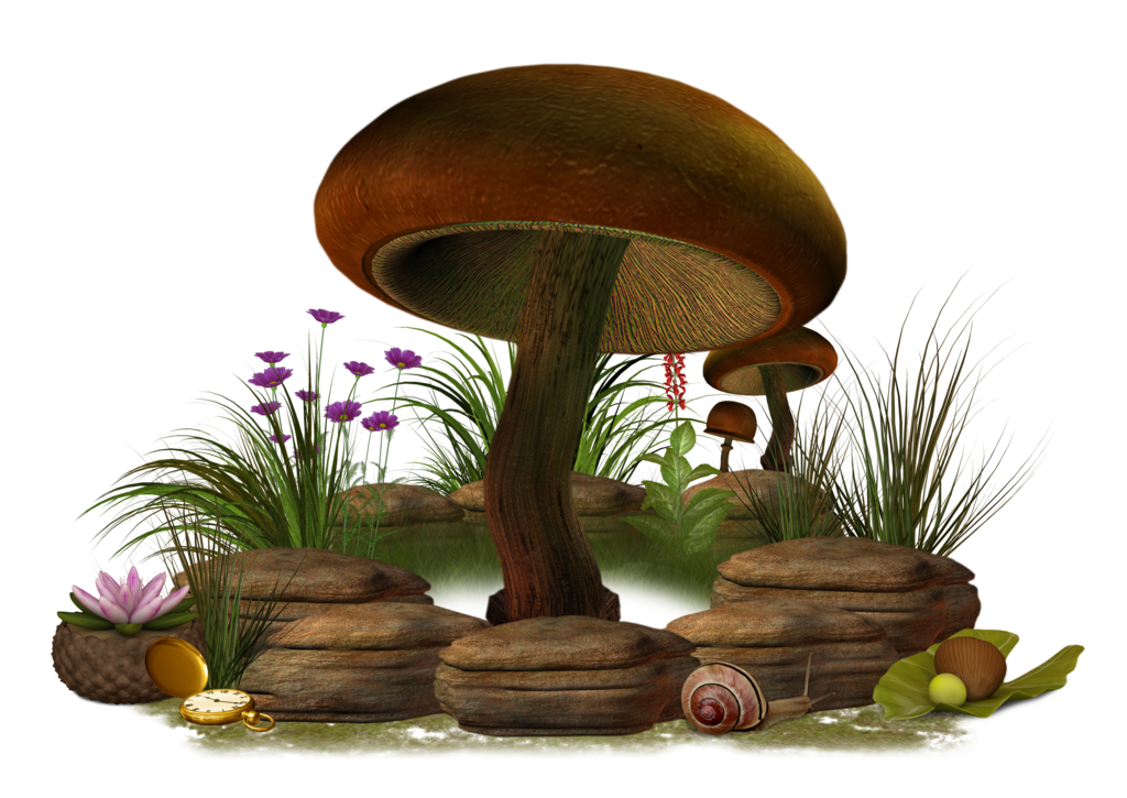 Vector mushroom fantasy. Download free png icons