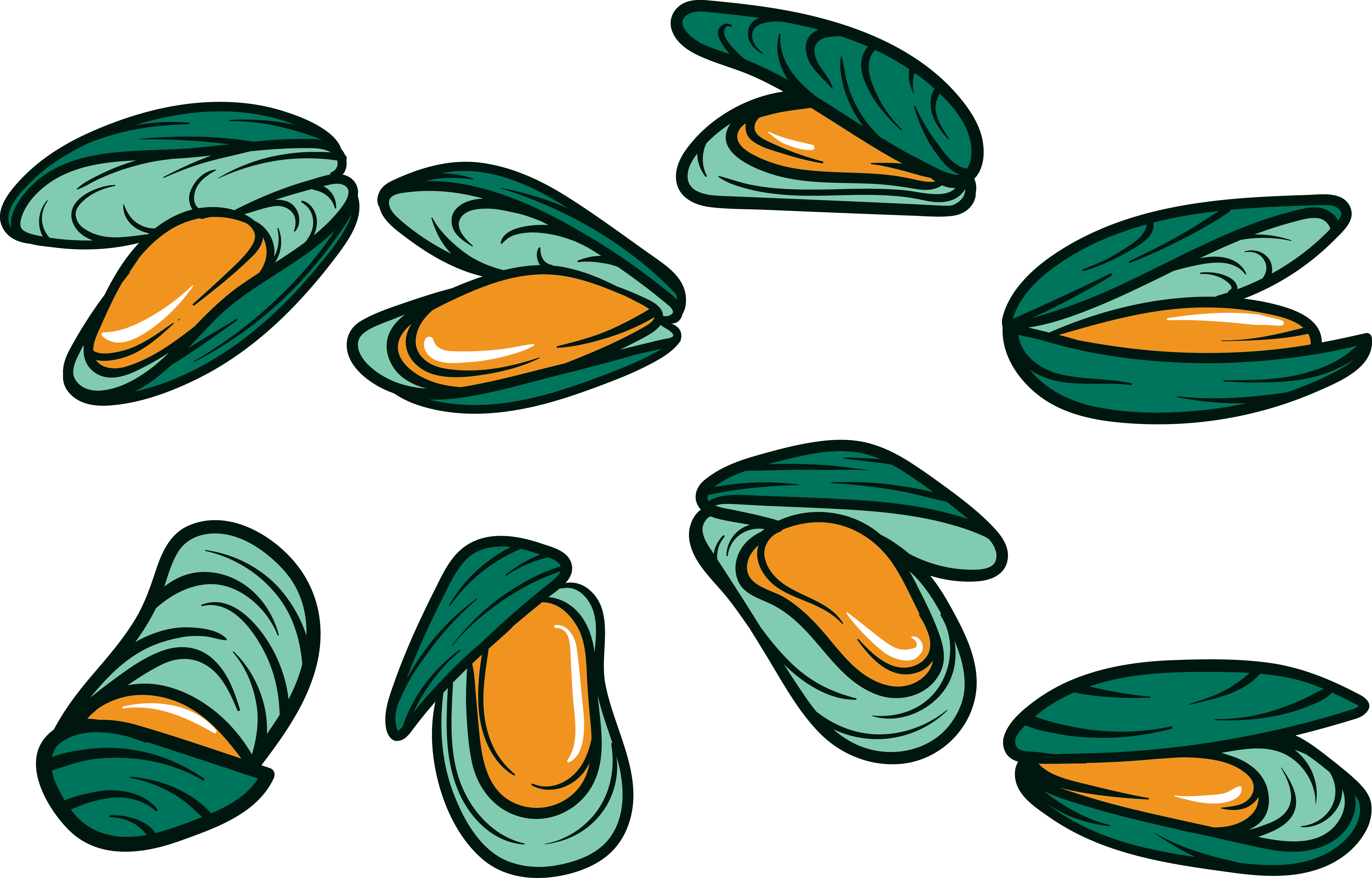 Vector nail cartoon. Mussel seafood oyster squid