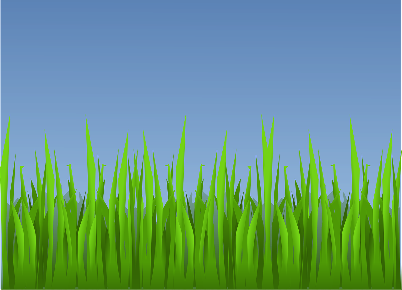 Vector nature countryside. Grass landscape wallpaper background