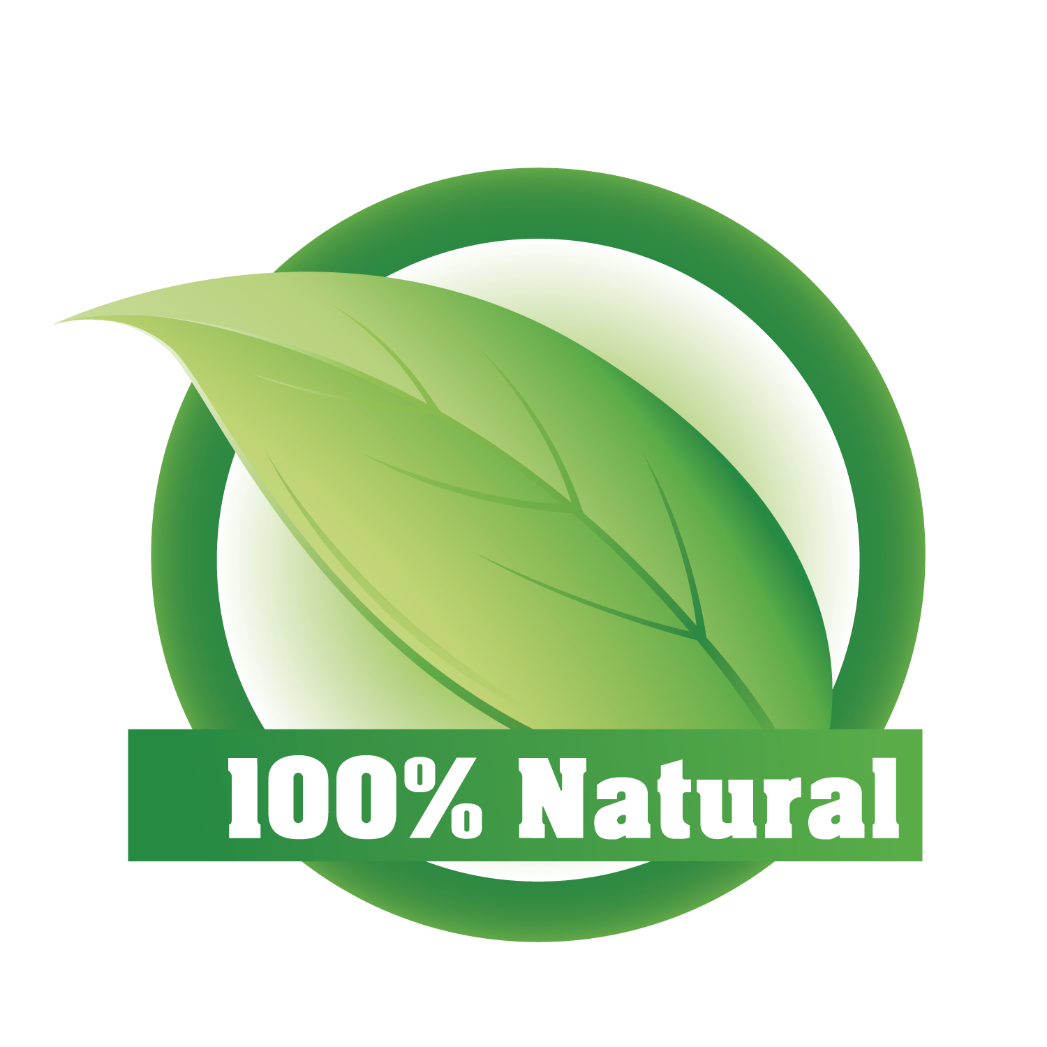 Vector nature herbal. Euclidean icon natural transprent