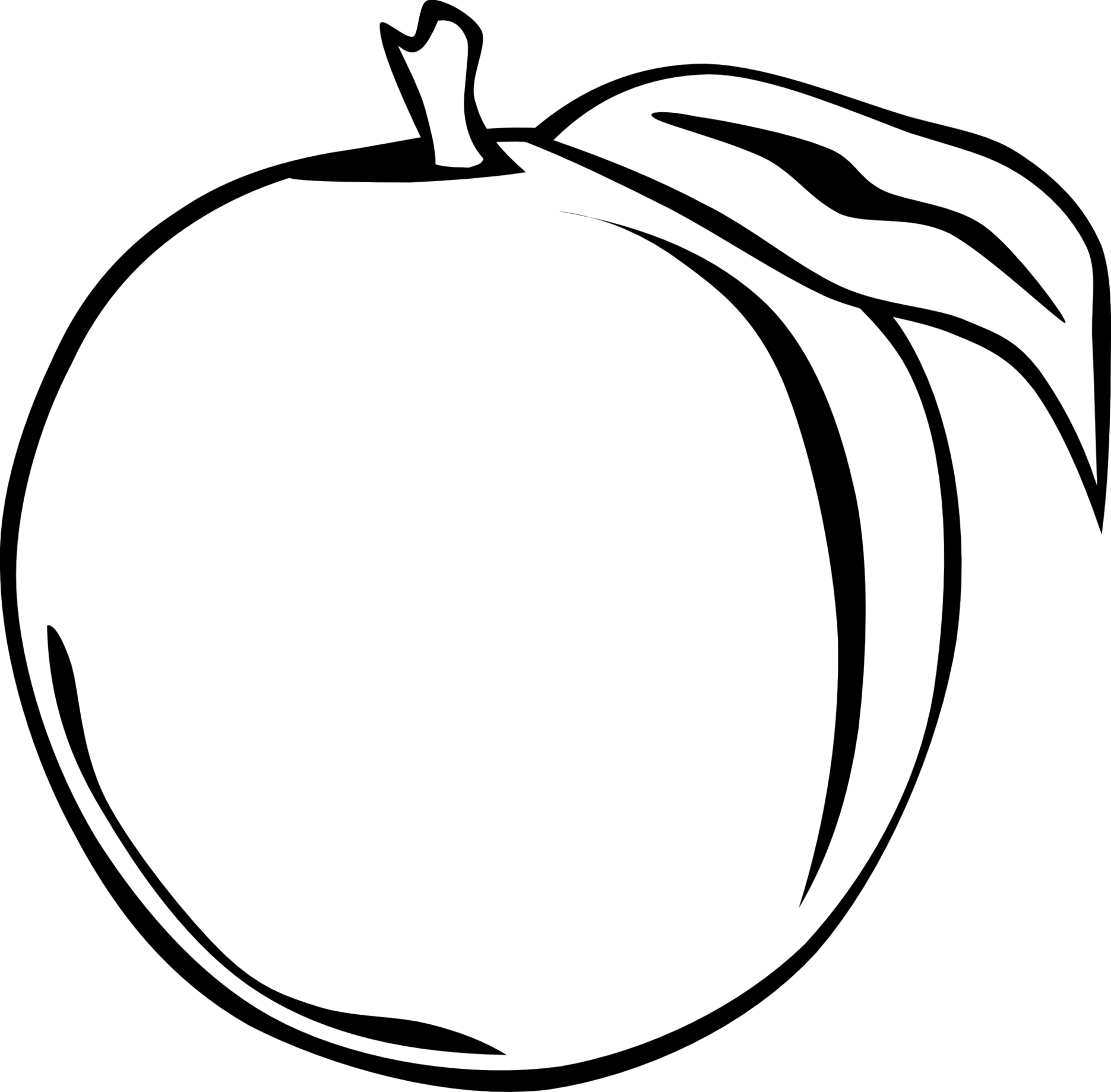 Vector orange black and white. Collection of fruit