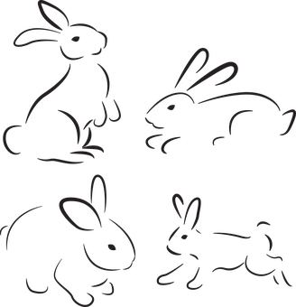 Vector organism. Rabbit nature animal moodboard picture royalty free library