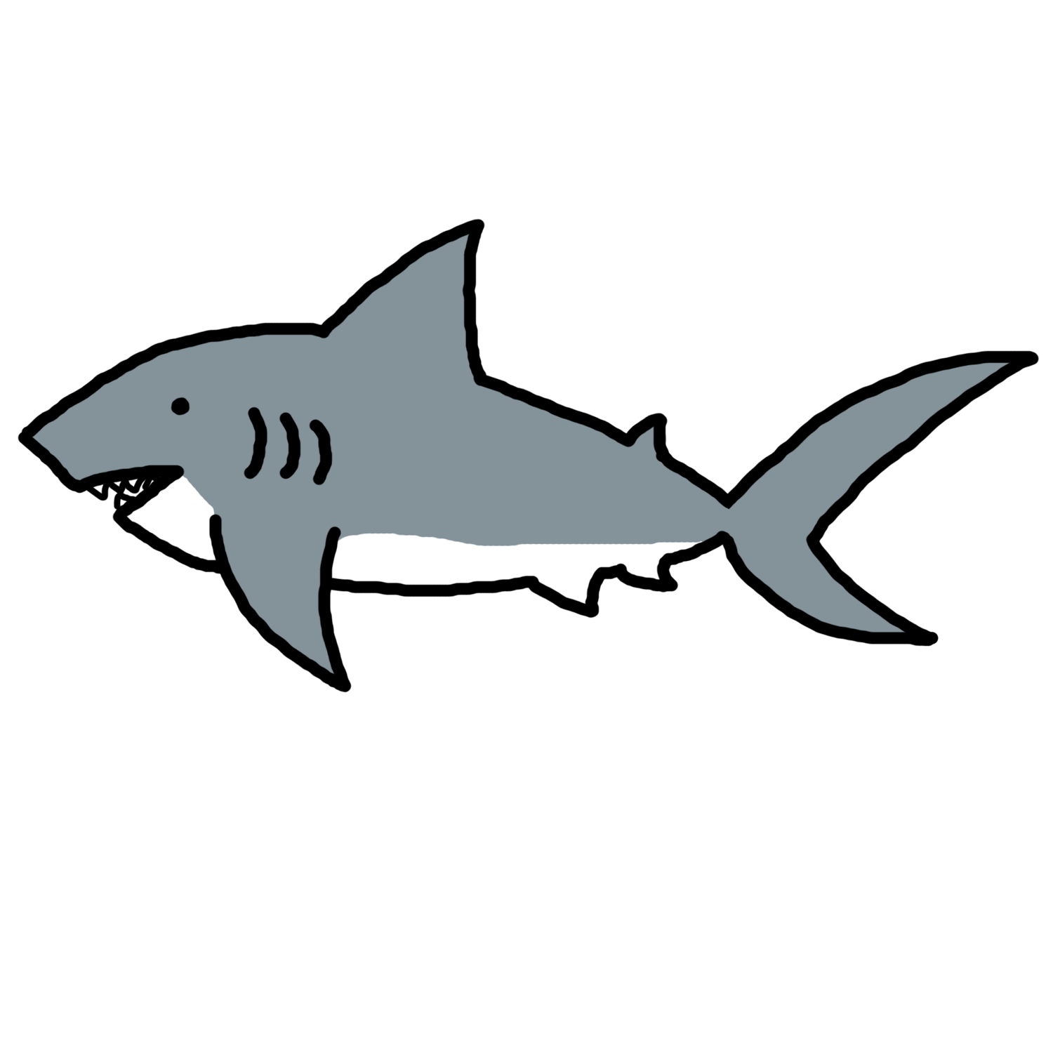 Vector outline shark. Collection of free fripperer