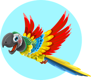 Vector parrot. Different types of