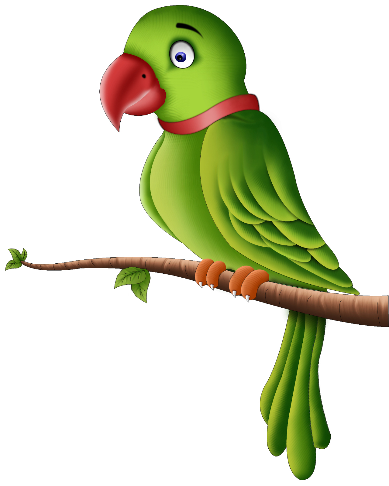 Vector parrot jungle. Image result for hinh