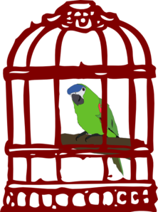 Vector parrot red. In a bird cage