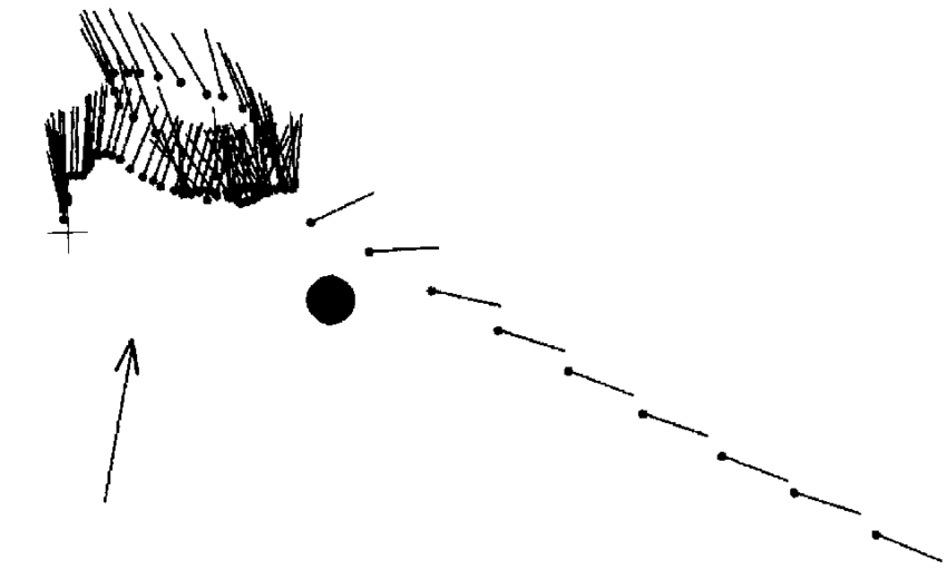 Vector path bee. The flight of approaching