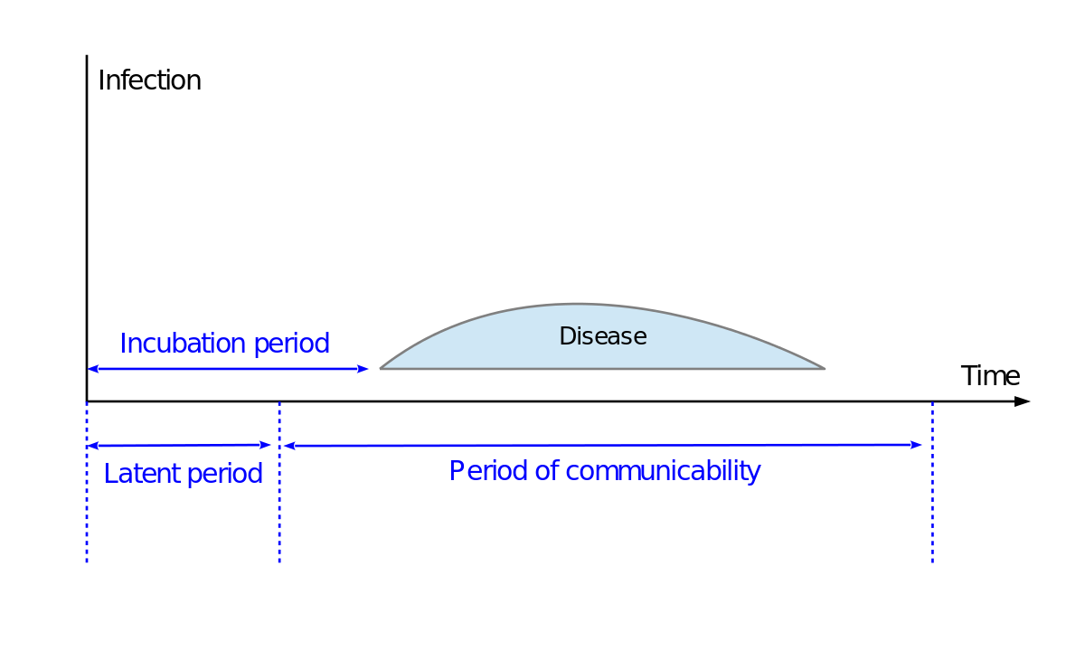 Vector pathogen germ. Incubation period wikipedia
