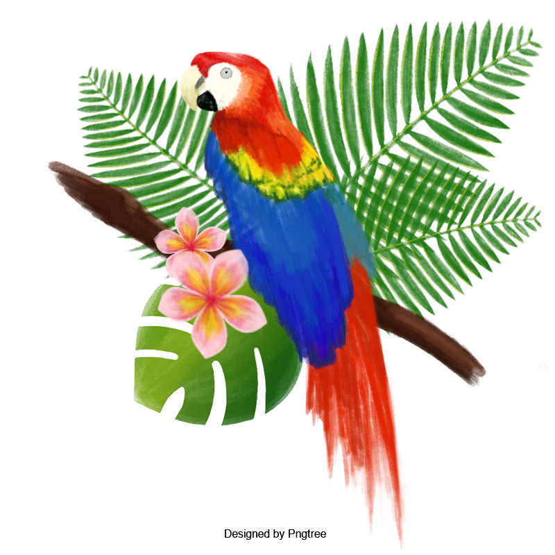 Vector psd bird. Hand painted watercolor big