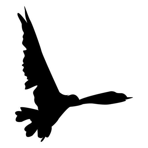 Vector psd bird. Flying sequence transparent png