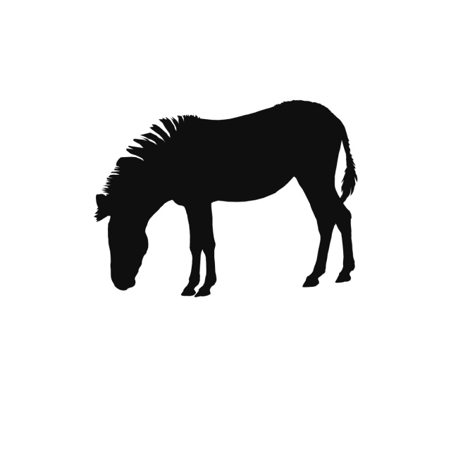 Vector horses psd. Horse wild animals background