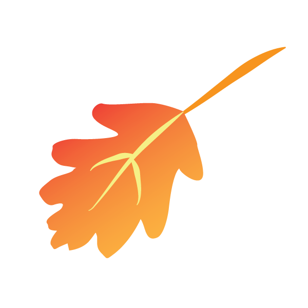 Vector pumpkins free fall. Today s autumn graphic