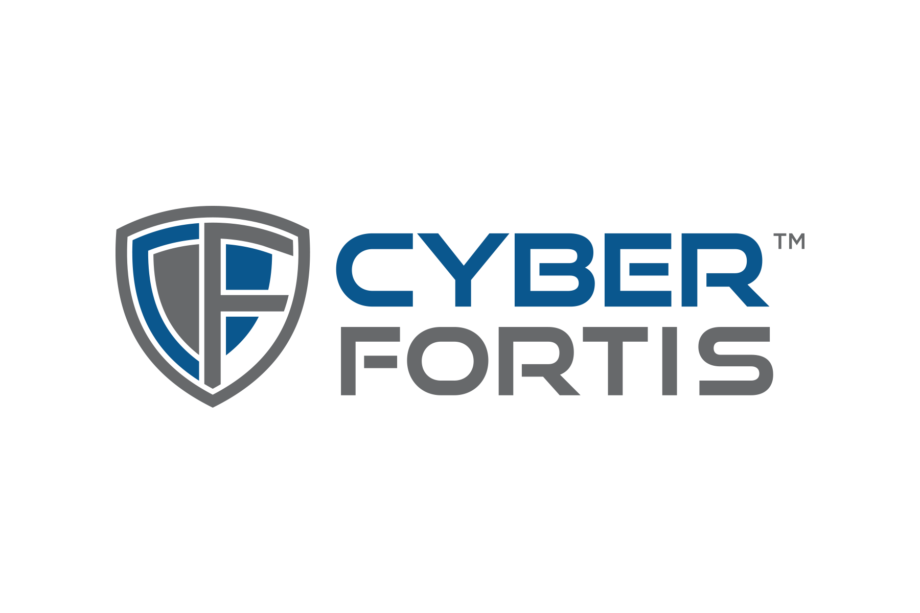 Vector securities cyber. Cyberfortis financial sector risk
