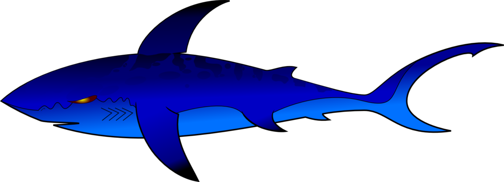 Vector sharks mako shark. Blue by efernothedragon on